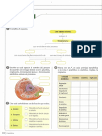 taller-metabolismo 2p.pdf