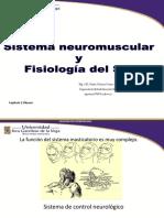 3T Sistema Neuromuscular