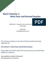Block 5 Anatomy Seminar 1 Perineum MG_5MAY2016