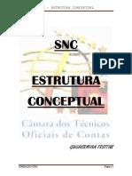 SNC - EstruturaConceptualDIS1409.pdf