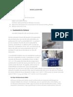 Disoluciones Informe Umsa Ingenieria I-2018