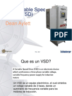 VSD_introduction for AE FS Spanish Version June 2009