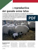 Patología reproductiva en Ovinos.pdf