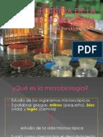 Caracteristicas y  Estructura Bacteriana