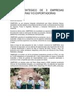 Plan Estrategico de 3 Empresas Importadoras y Exportadoras