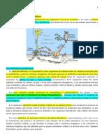 Estructura de Los Ecosistemas. Elementos Bioticos.