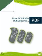 Plan de Riesgos Psicosociales (Separador)