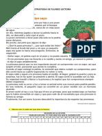 ESTRATEGIA FLUIDEZ LECTORA N°11