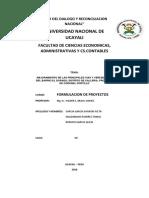 Form. Proyectos 1