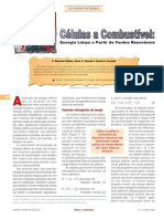 CÉLULAS COMBUSTIVEL.pdf