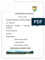 UNIVERSIDAD-DE-HUÁNUCO.docx