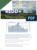 IPAM Re Framing Redd Spanish