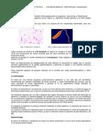 APUNTE Vibrio Cholerae