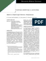 Bibliografia Histoplasmosis.pdf