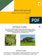 Análisis Estructural.pdf