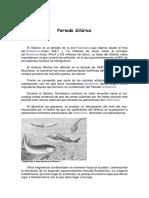 Periodo Silúrico.docx