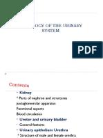 urinarysystem-140721112057-phpapp02