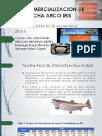 Productos y Comercialización de TRucha Arco Iris