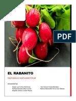 EL RABANITO.docx
