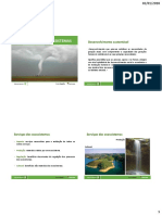 8F Catástrofes Naturais e Poluição