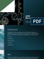ADN Recombinante (1)