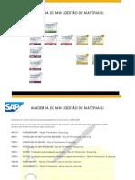 Academia SAP MM Roteiro.pdf