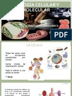 Biologia Celular y Molecular Célula- Generalidades