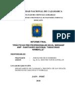 Informe Practicas SNTN