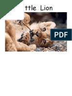 Little-Lion-FKB-Kids-Stories.pdf