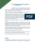 Informe de Práctica de Campo Realizada en La Cantera Corvimark