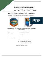 349804324-Informe-Minera-Santa-Luisa-Huanzala.docx