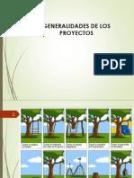 1-Generalidades de Los Proyectos