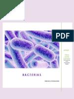 Bacterias. Historia e Introducción R4