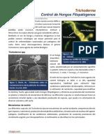 35. Trichoderma. Control de Hongos Fitopatogenos