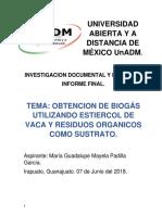 Informe Final Biogas Rural.