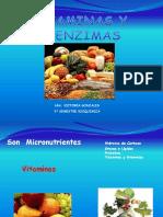 Vitaminas y Coenzimas Presentacion