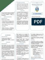 270215601-triptico-humanismo.docx