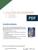 fijacion y amonificacion.pptx