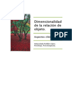 Dimensionalidad de La Relación de Objeto