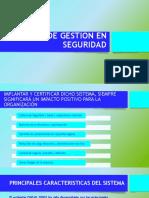 SISTEMA DE GESTION EN SEGURIDAD.pptx
