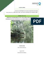 Propuesta Reforestacion Recuperacion de Ecosistemas Humedos