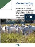 Utilizacao-de-Escores-Visuais-de-Caracteristicas-Morfologicas-de-Bovinos-Nelore-como-Ferramenta-para-o-Melhoramento-Genetico-Animal.pdf