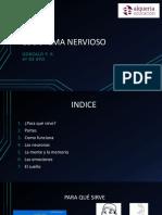 elsistemanervioso-171218192554.pdf