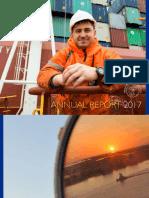 SCI Annual Report 2017