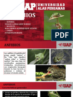 Mecanismos de Adaptacion de Los Anfibios