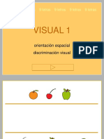 visual1.ppt