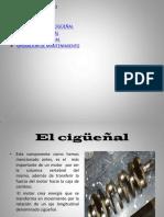 Cgueñal.pdf