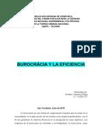 analisis burocracia