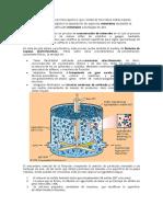 celdas de flotacion.docx
