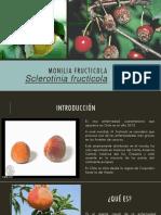 Monilinia fructicola